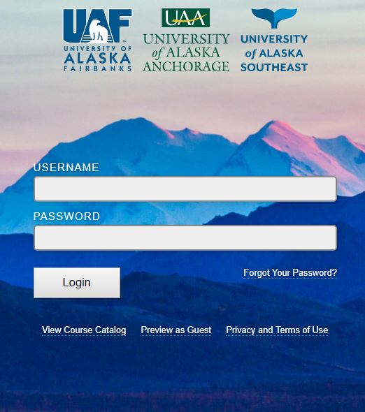 Blackboard UAA Login