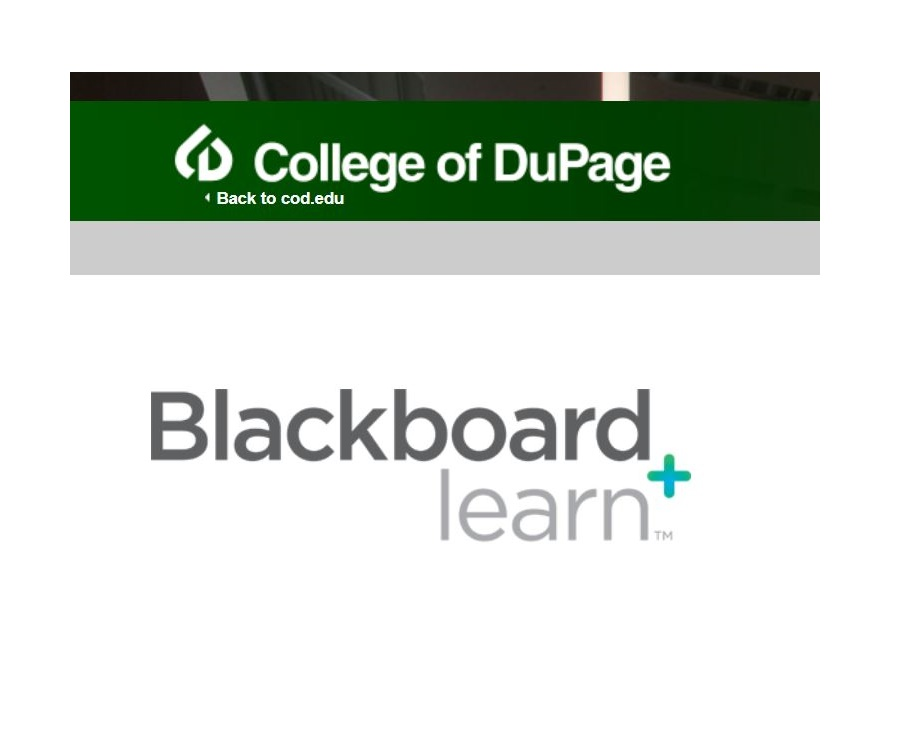 COD Blackboard Login