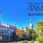 University of Tampa Blackboard Login @ ut.blackboard.com