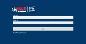 CSU Pueblo Blackboard Login