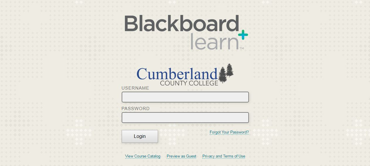 Cumberland County College Blackboard Login